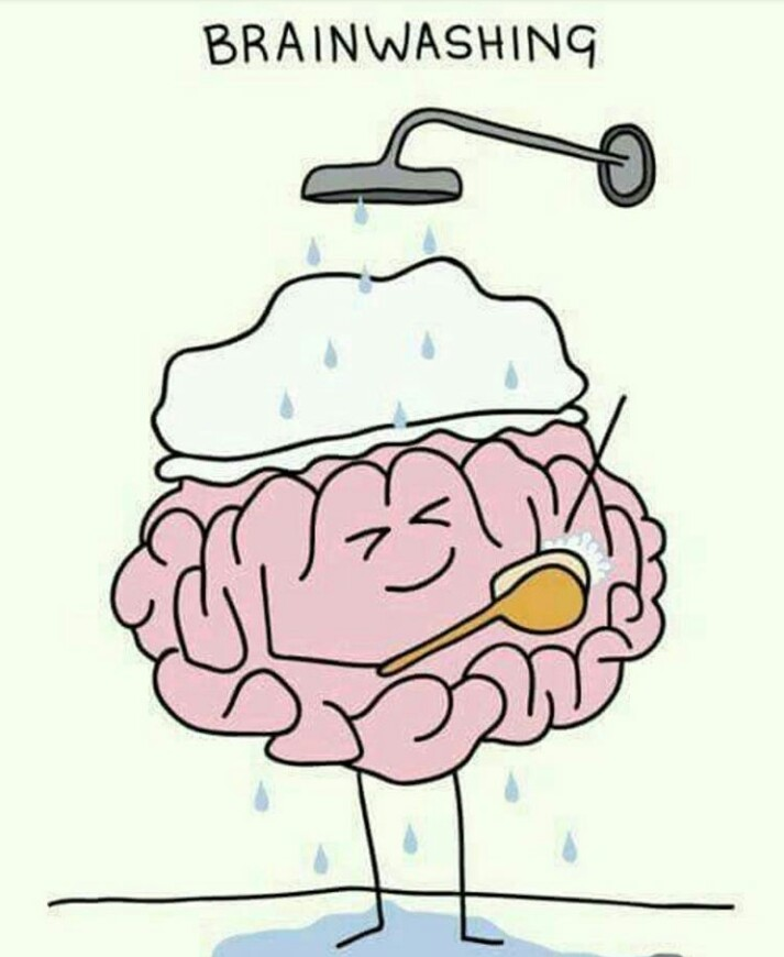 Have You Had Your Brain Washed Lately?